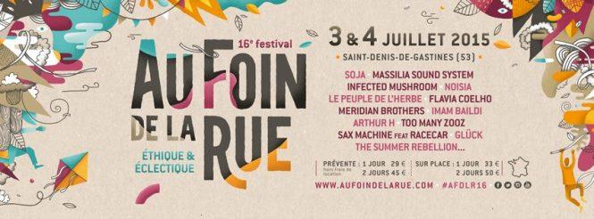 Infecetd-Mushroom-@-Festival-Au-Foin-De-La-Rue-2015a-flyer